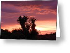 Beautiful Sunset In Arizona Greeting Card