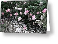 Beautiful Until The Last Petal Falls Greeting Card