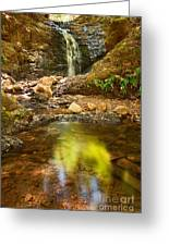 Beautiful View Of Upper Falls Located In Uvas Canyon County Park Forest Reflection Greeting Card