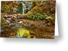 Beautiful View Of Upper Falls Located In Uvas Canyon County Park. Greeting Card