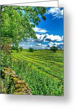 Summer View In Yorkshire Greeting Card