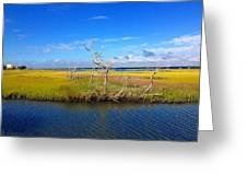 Beautiful View Topsail Island Greeting Card