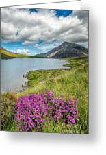 Beautiful Wales Greeting Card