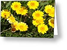 Beautiful Weeds 32655 Greeting Card