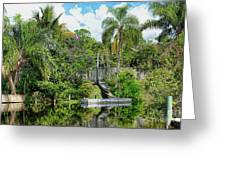 Beautiful Winter Day In Florida  Greeting Card
