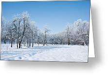 Beautiful Winter Landscape Greeting Card