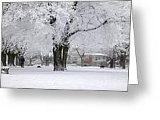 Beautiful Winter Park Greeting Card