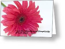 Beauty And Simplicity Greeting Card