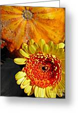 Beauty And The Squash 2 Greeting Card