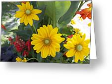 Beauty Flowers Greeting Card by Jocelyne Choquette