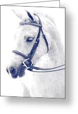 Beauty In A Bridle Greeting Card
