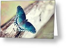 Beauty In Blue Greeting Card