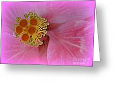 Beauty In The Detail Greeting Card