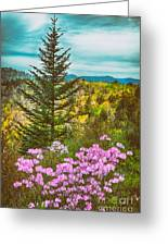 Beauty In The Forest II Greeting Card