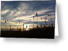 Beauty In The Sky Greeting Card