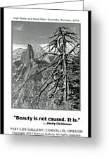 Beauty Is Not Caused Greeting Card
