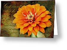Beauty Of Creation Greeting Card