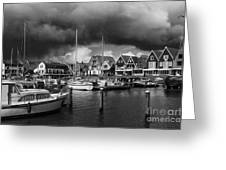 Beauty Of Holland 1 Greeting Card