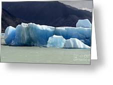 Beauty Of Icebergs Patagonia 6 Greeting Card