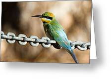 Beauty On Chains Greeting Card