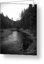 Beauty On The River Greeting Card