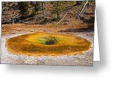 Beauty Pool In Upper Geyser Basin In Yellowstone National Park Greeting Card