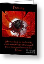 Beauty Red Anenome Greeting Card