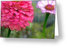 Beauty Showing Through The Rain Greeting Card