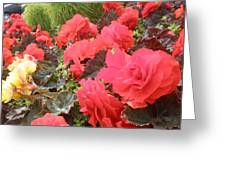 Beauty Greeting Card by Sonya Ragyovska