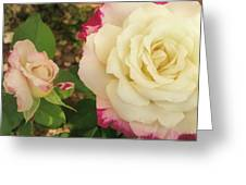 Beauty Together  Greeting Card