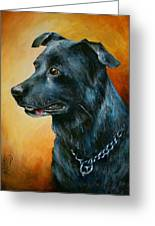 'beaux' Greeting Card