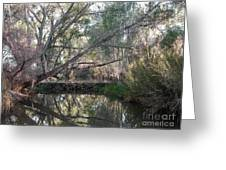 Beaver Dam Greeting Card