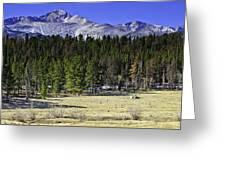 Beaver Meadows Greeting Card by Tom Wilbert
