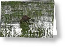 Beaver On The Work Greeting Card by Lizbeth Bostrom
