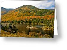 Beaver Pond Greeting Card