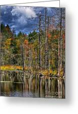 Beaver Pond Reflections Along The Highland Scenic Highway Greeting Card