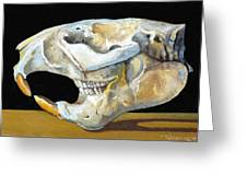 Beaver Skull 1 Greeting Card