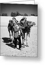 Bedouin Camel Minder Recieves Call On A Mobile Phone With Camels In The Sahara Desert At Douz Tunisia Greeting Card