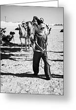 bedouin camel tender leads group of camels to be used for tourist trip into the sahara desert at Douz Tunisia Greeting Card