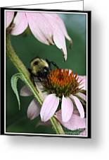 Bee Brunch I Greeting Card