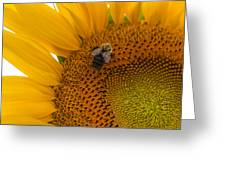Bee Business Greeting Card