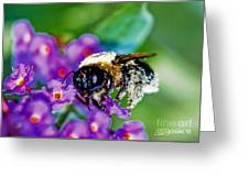 Super Bee Covered With Pollen Greeting Card