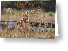 Bee Hives II Greeting Card