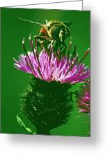 Bee In A Green Ambiance Greeting Card