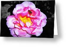 Bee Landing Greeting Card