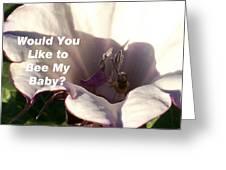 Bee My Baby Greeting Card