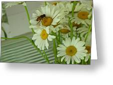 Honey Bee On Daisy Print Photo For Sale Greeting Card
