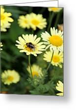 Bee On Yellow Greeting Card