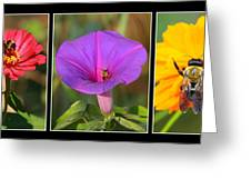 Bee Triptych Greeting Card