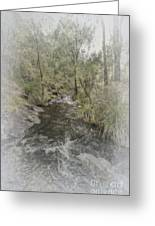 Beedelup Falls Greeting Card